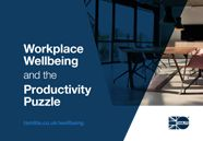 Tamlite Lighting Wellbeing in the Workplace cover image