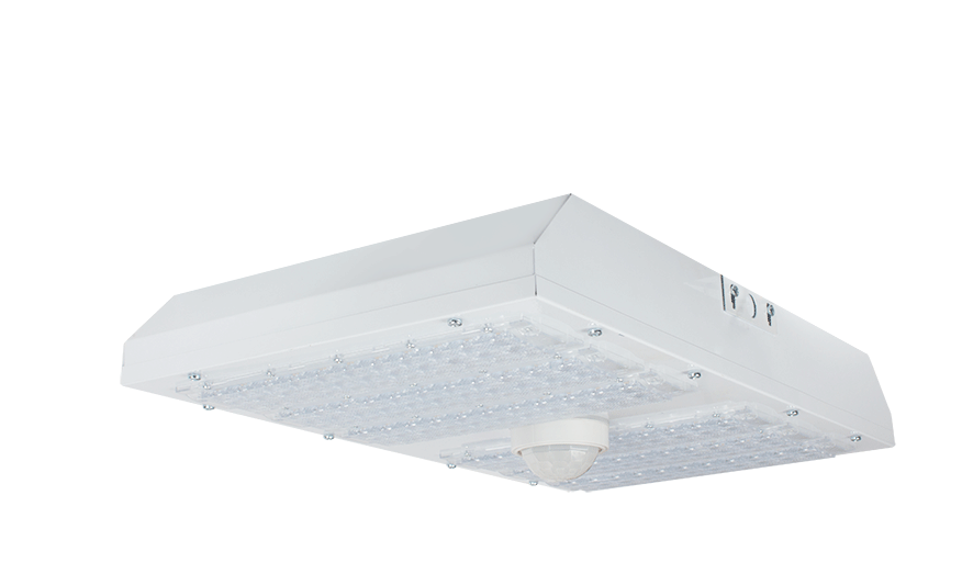 EXPO WP LED low bay product photograph