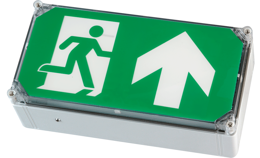 WP EXIT BOX weatherproof emergency exit box product photograph