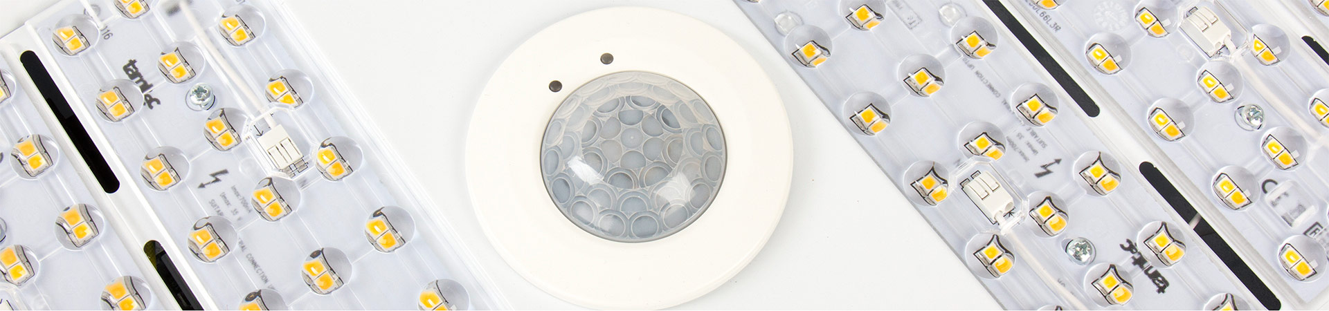 downlights photograph